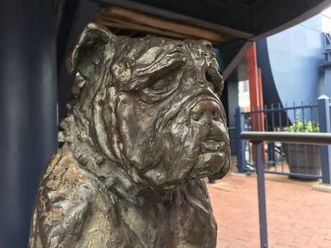 Bondi of HMS Verbena, dog statue, Knysna, Knysna Animal Welfare, sculptor Karel du Toit