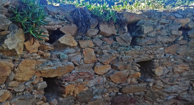 Knysna Fort or Thomson's Folly - loophole tower wall